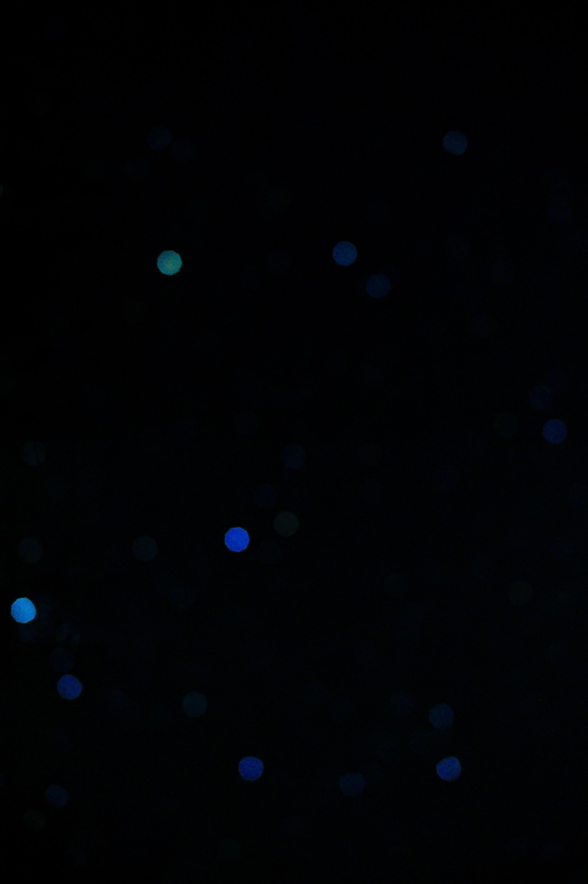 L1011444
